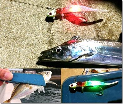 坊勢島フラップ釣法
