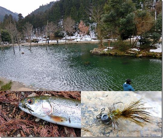 朽木管理釣り場で釣り