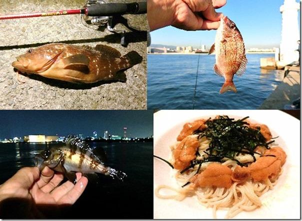 神戸和田防で五目釣り