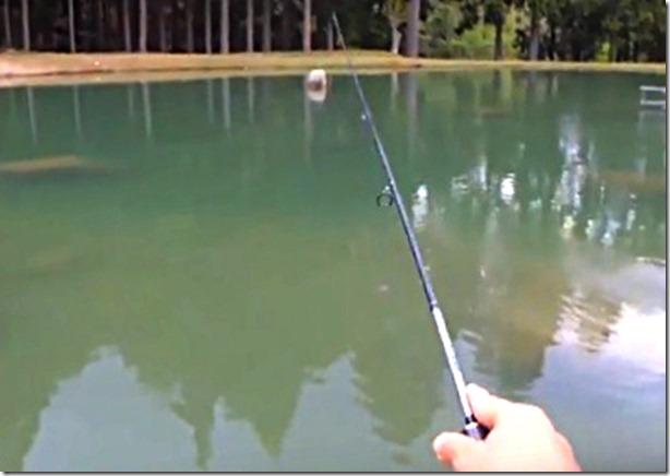 管理釣り場(エリアトラウト)用ロッド1