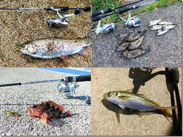 アジング・メバリング・穴釣り・管理釣り場用ロッド