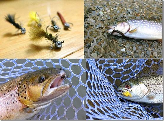 管理釣り場初心者でも釣れる3種類のフェザージグの紹介