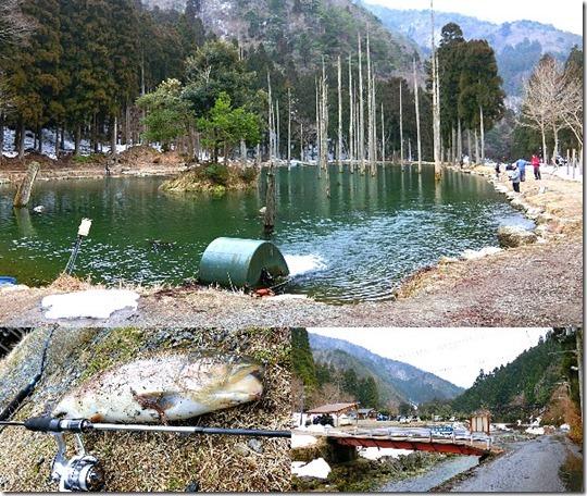 朽木渓流魚センターの紹介