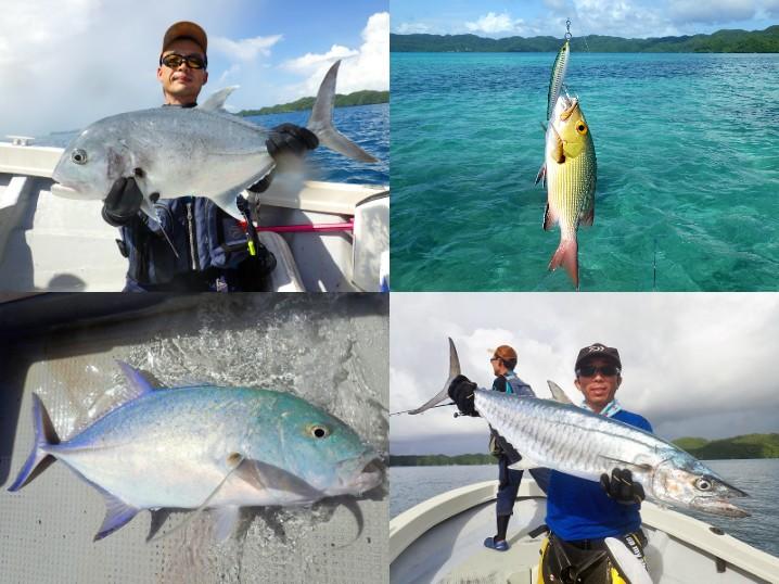 パラオGT釣行3日目の釣果