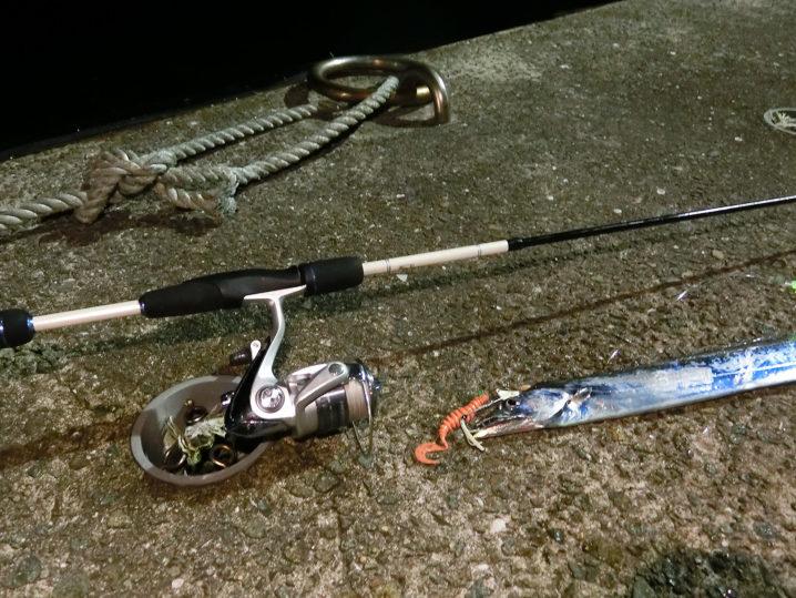 フラップ釣法でタチウオが次々ヒット2