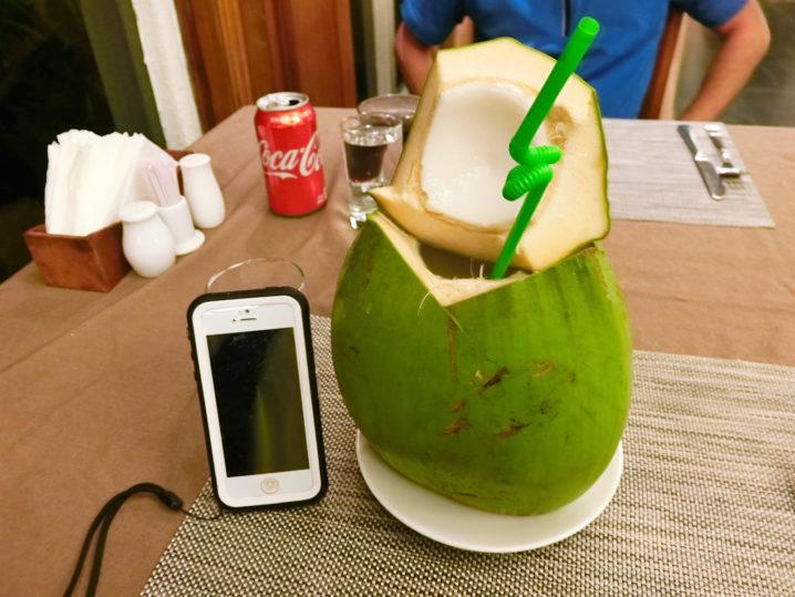 やっぱり椰子でっかい1