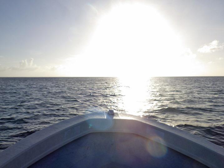 パラオGT釣行2日目終了2