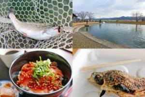 南郷水産センターのルアー・フライ釣り場の釣果・ヒットルアー・グルメ紹介
