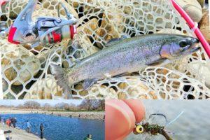 北方川釣り体験場で爆釣する為のコツとヒットルアーを紹介