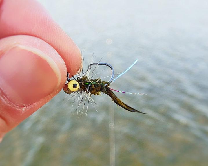 北方川釣り体験場でフェザージグを使って釣る