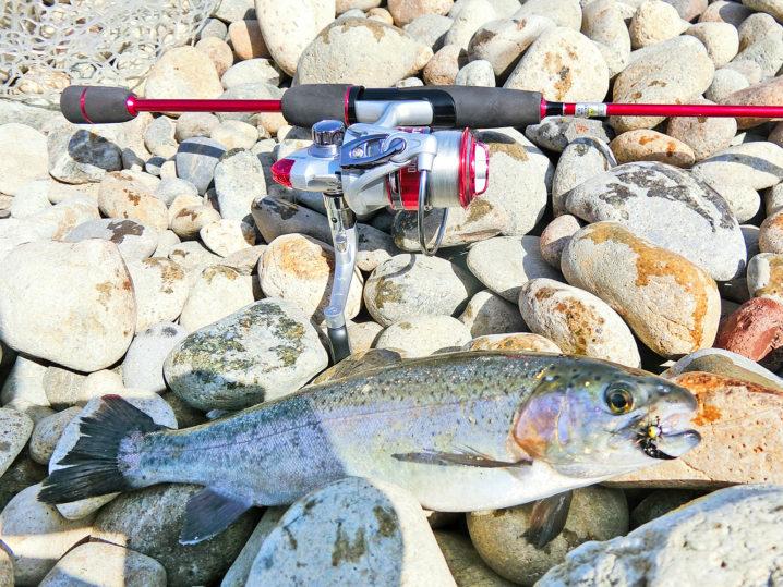 北方川釣り体験場でニジマスが入れ食いになる1