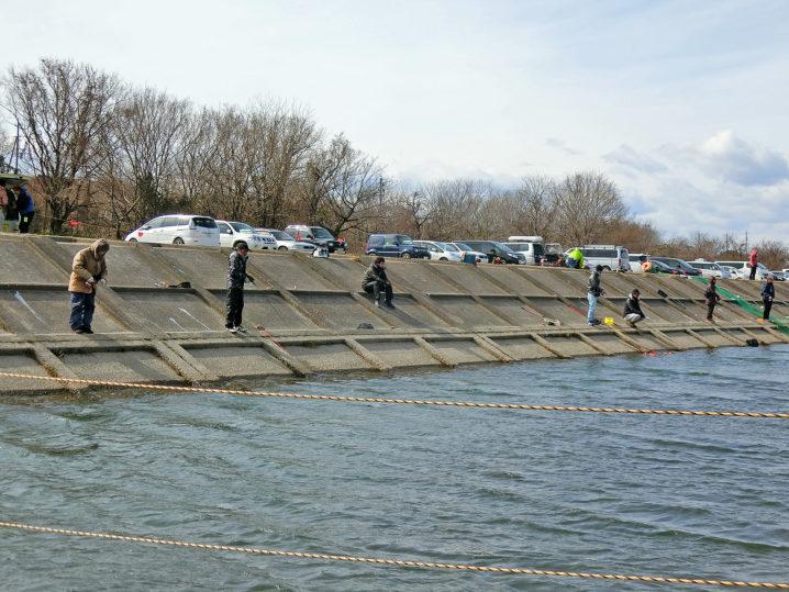 北方川釣り体験場は護岸側が良く釣れる