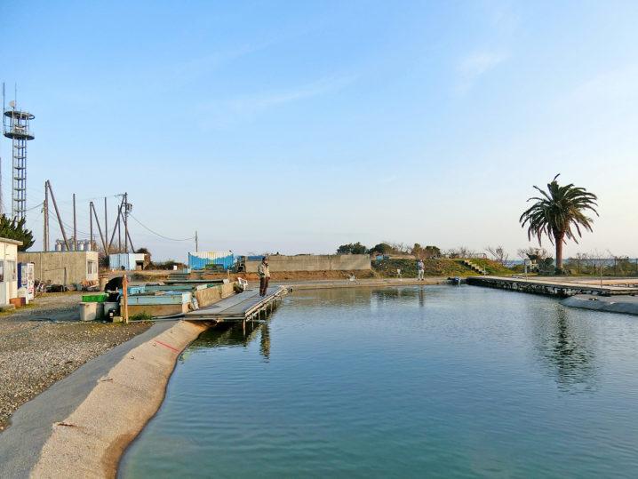 爆釣美浜フィッシングパークでのルアー釣りをするも2時間釣れず