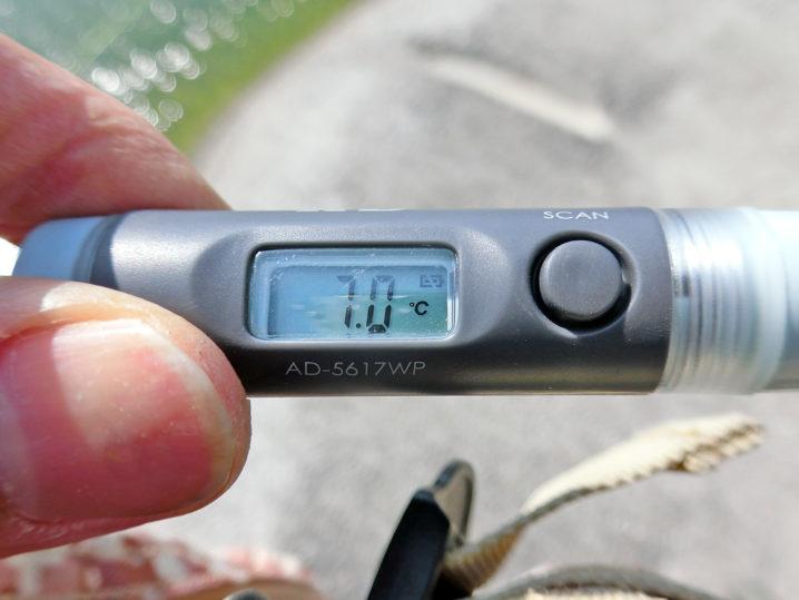 爆釣美浜フィッシングパークの水温