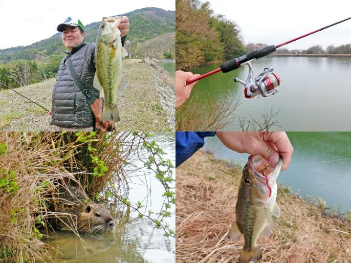 3月末の四国野池巡りブラックバス釣りの釣果