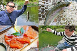2019年5月上旬大阪の管理釣り場千早川マス釣り場で60匹以上の釣果!初心者でも釣れるルアーと釣り方の紹介も