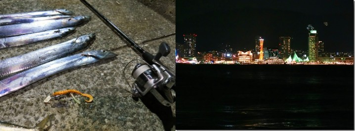 タチウオのルアー釣り釣行日記