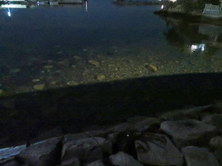 水深30cm~50cmの超浅場を攻めてみた