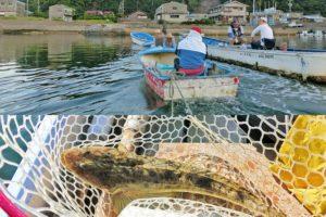 6月下旬愛知県知多半島でマゴチ・ヒラメを狙う|ヒットルアー・釣り方・釣果を紹介