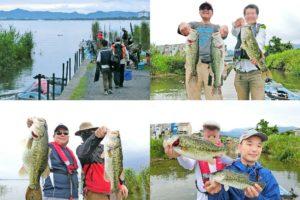 2019年7月上旬琵琶湖南湖北湖バス釣り大会|4ボートのヒットルアーとパターンを紹介