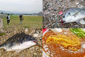 7月下旬兵庫県西宮チニングで初心者もチヌをゲット!|釣り方と根掛かり軽減のコツを紹介