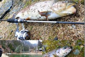 管理釣り場(エリアトラウト)釣り入門|初心者向けタックル・ルアー・釣り方紹介