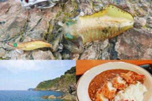 9月中旬福井県三方方面へエギング釣行|シーズン初期の釣り方・地域選びのコツも紹介