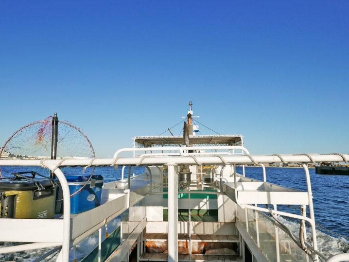 午後5時の渡船に乗って和田防波堤へ2