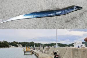 2019年10月中旬坊勢島でタチウオ釣り|ルアーで1匹の貧果となった理由と今後の対応策を紹介