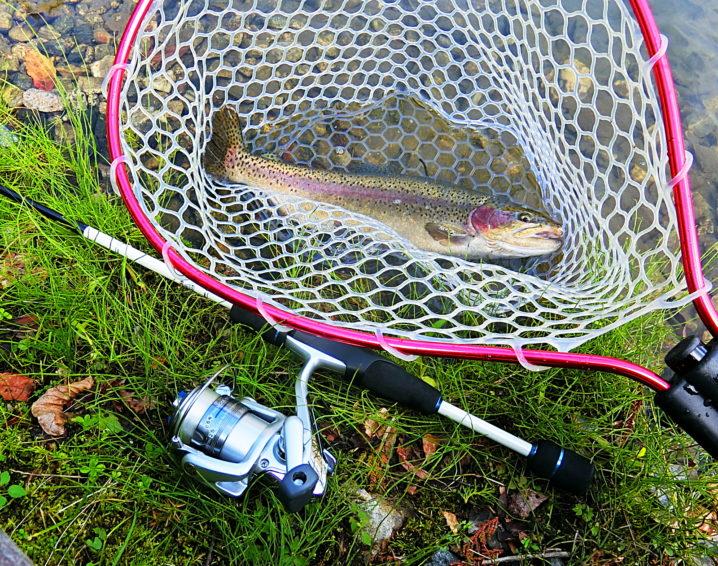 管理釣り場も釣りやすい季節になります