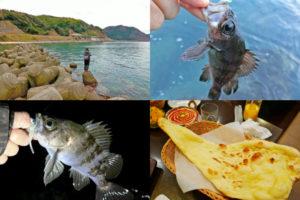 12月下旬福井メバリングで好釣果|ボウズにならない為のワーム選択と爆釣の条件を紹介