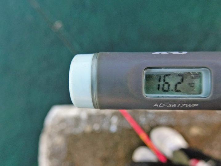 水温は約16.2度