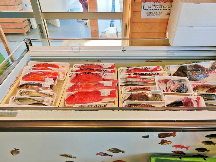 枯木灘鮮魚商会3