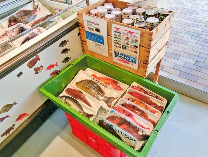 枯木灘鮮魚商会4