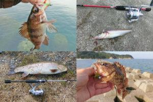 4月の春にライトルアーフィッシングで釣れる魚種とその釣り方