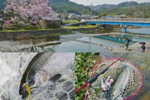 初心者必見!大阪にある管理釣り場【芥川マス釣り場】を完全攻略|釣り方・ルアー・使い方を紹介