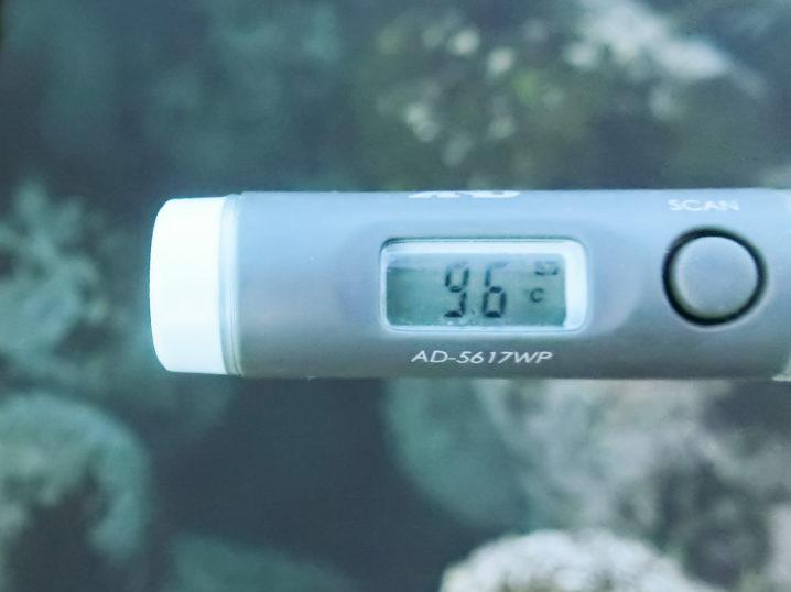 海水温は約9.6度
