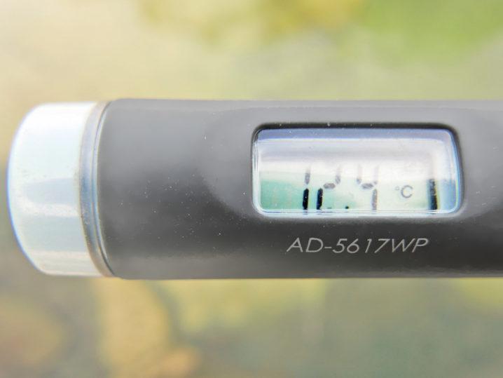 まずは水温を測定