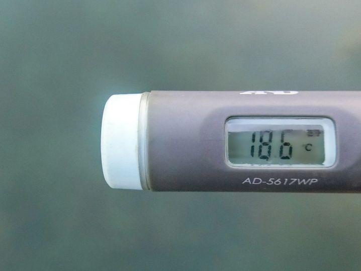 海水温は約18.6度