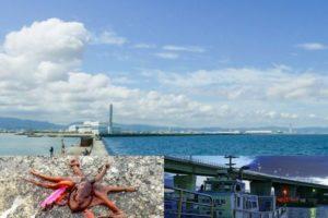 7月上旬大阪湾の岸和田一文字でショアジギング釣行|青物が釣れない時の3つのボウズ回避方法を紹介