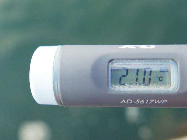 海水温は約21度