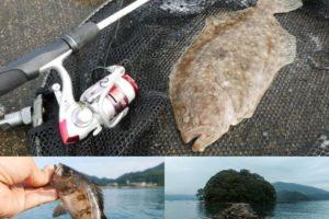 7月中旬福井県の沖防波堤でライトルアー五目釣り|メバリングタックルでテンジクガレイも!