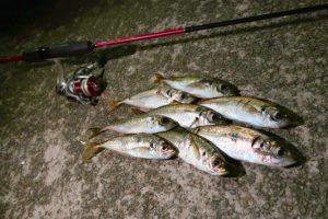 真夏の坊勢島アジング釣行|良型を釣る為の狙い方と最終兵器的ワームを紹介