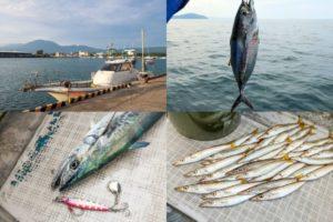 10月上旬福井オフショアジギング|初心者でもすぐ実践可能な釣れるコツとナブラ・お土産対策を紹介