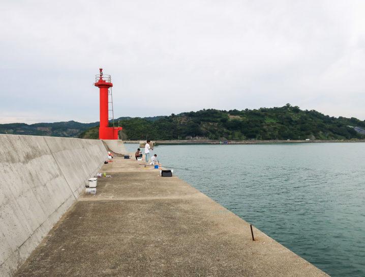 タチウオが爆釣となった釣り場の紹介