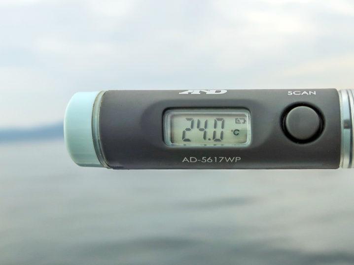 海水温は約24.0度