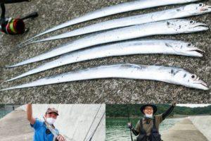 大阪湾のタチウオ釣りが絶不調の中でワインド・ワームの引き釣りで爆釣!釣り場・釣り方を紹介