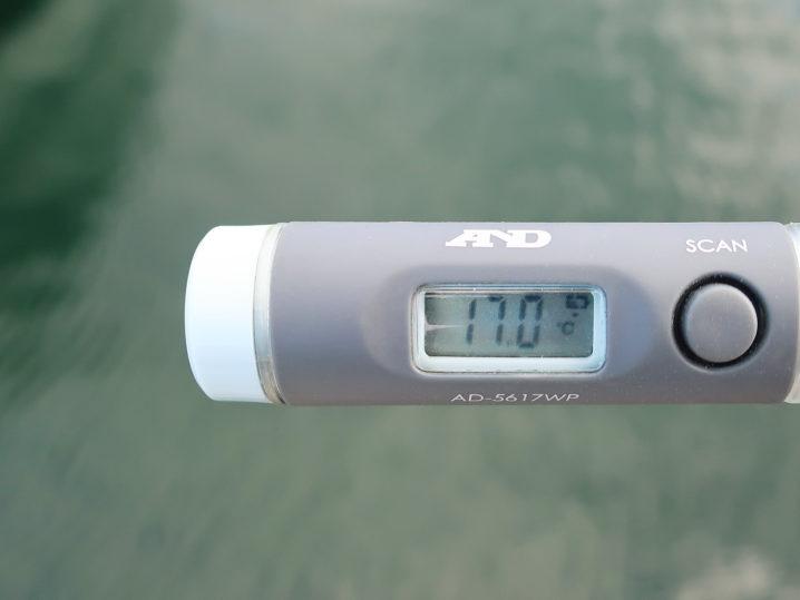 水温は約17.0度