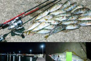11月下旬坊勢島アジング爆釣|ポイントの見切り方と好釣果となった釣り方とは
