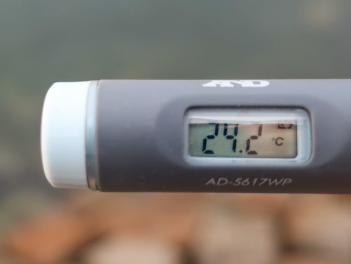 海水温は約24.2度
